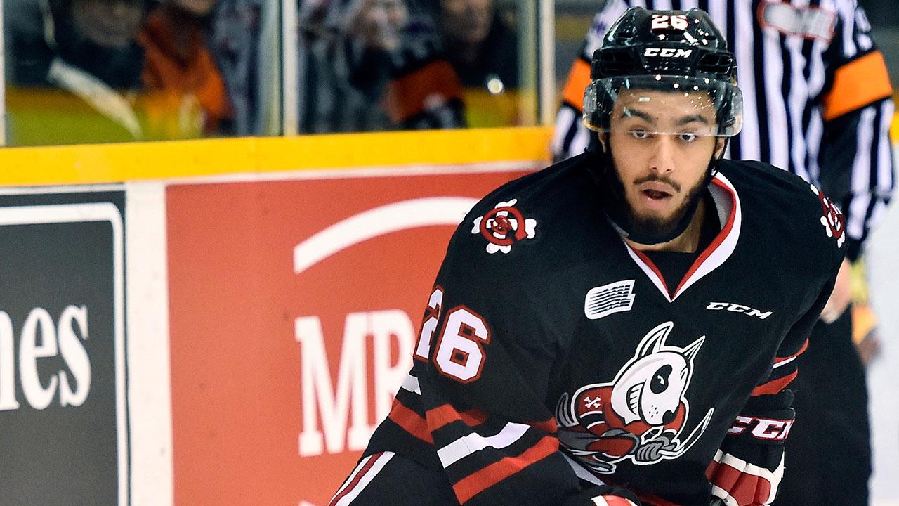 Josh-Ho-Sang;-Niagara-IceDogs;-OHL;-CHL;-OHL-Playoffs;-New-York-Isanders;-2014-NHL-Entry-Draft;-Sportsnet
