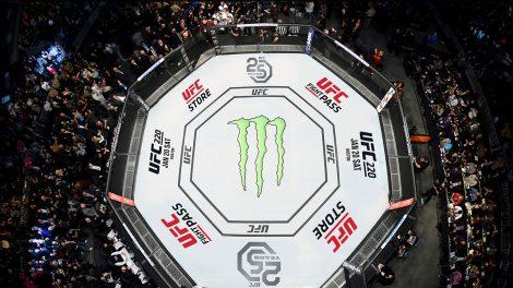 UFC-cage