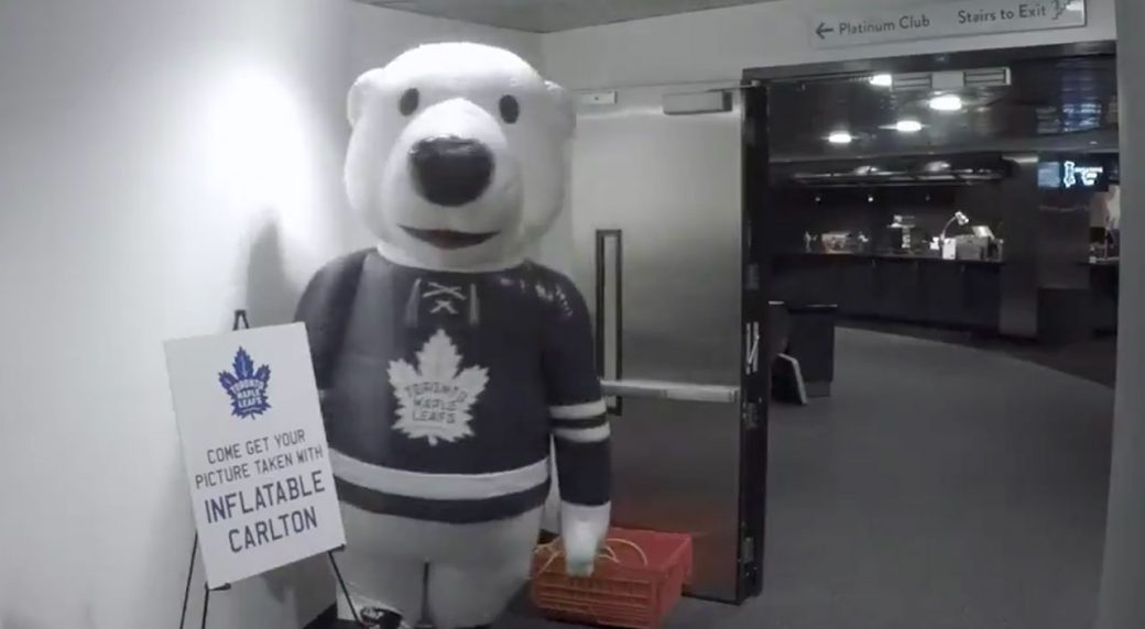 carlton-the-bear-pranks-maple-leafs-players