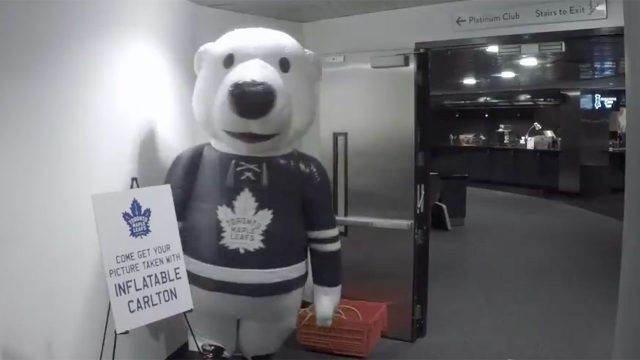 carlton-the-bear-pranks-maple-leafs-players