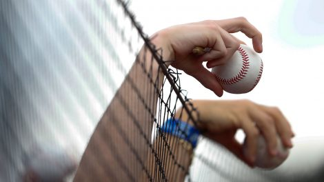 MLB-Netting