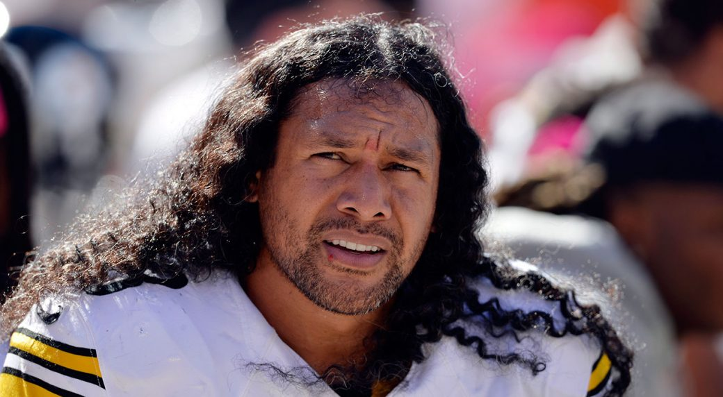 Troy Polamalu, Reggie Wayne highlight finalists for Hall of Fame