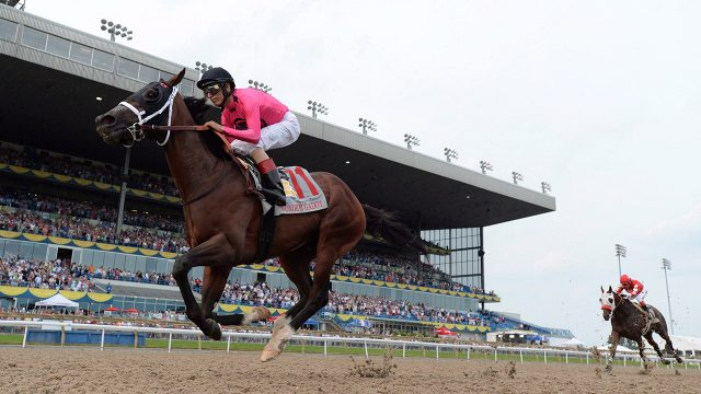 horces-race-for-queens-plate-at-woodbine-racetrack