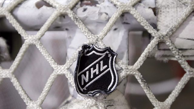 nhl-logo-on-net