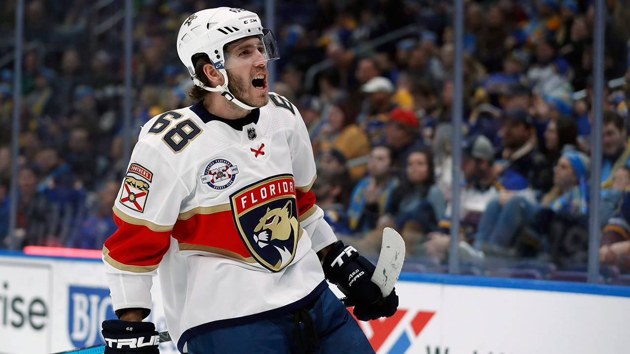 mike-hoffman-panthers